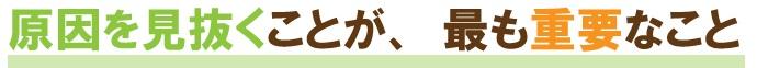 zakotu_midashi2